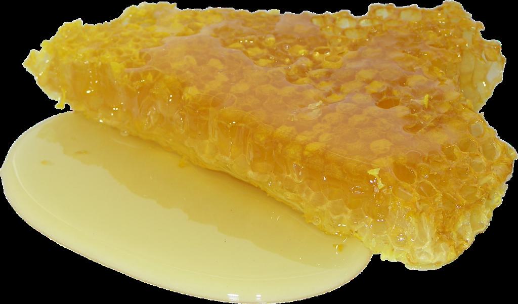 Как проверить мед на качество в домашних условиях и определить, натуральный он или нет