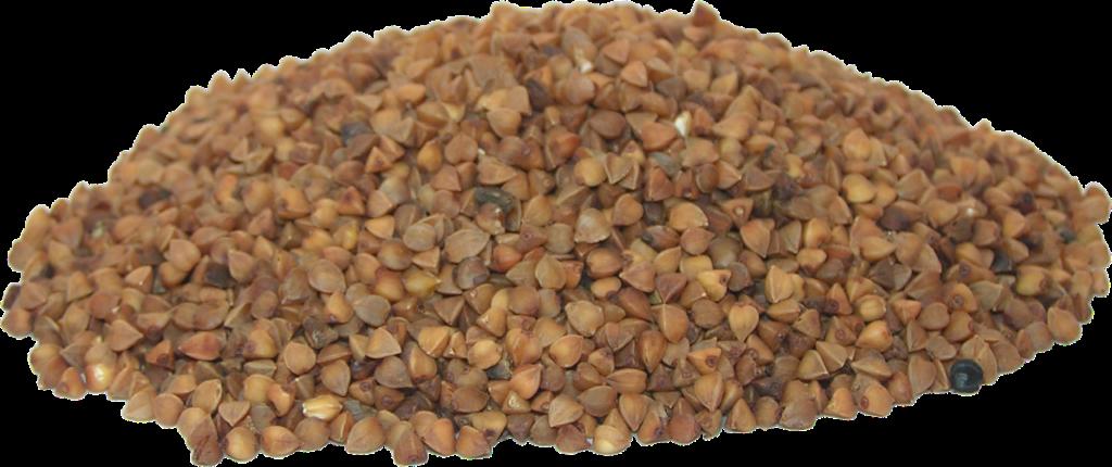 гречневое зерно
