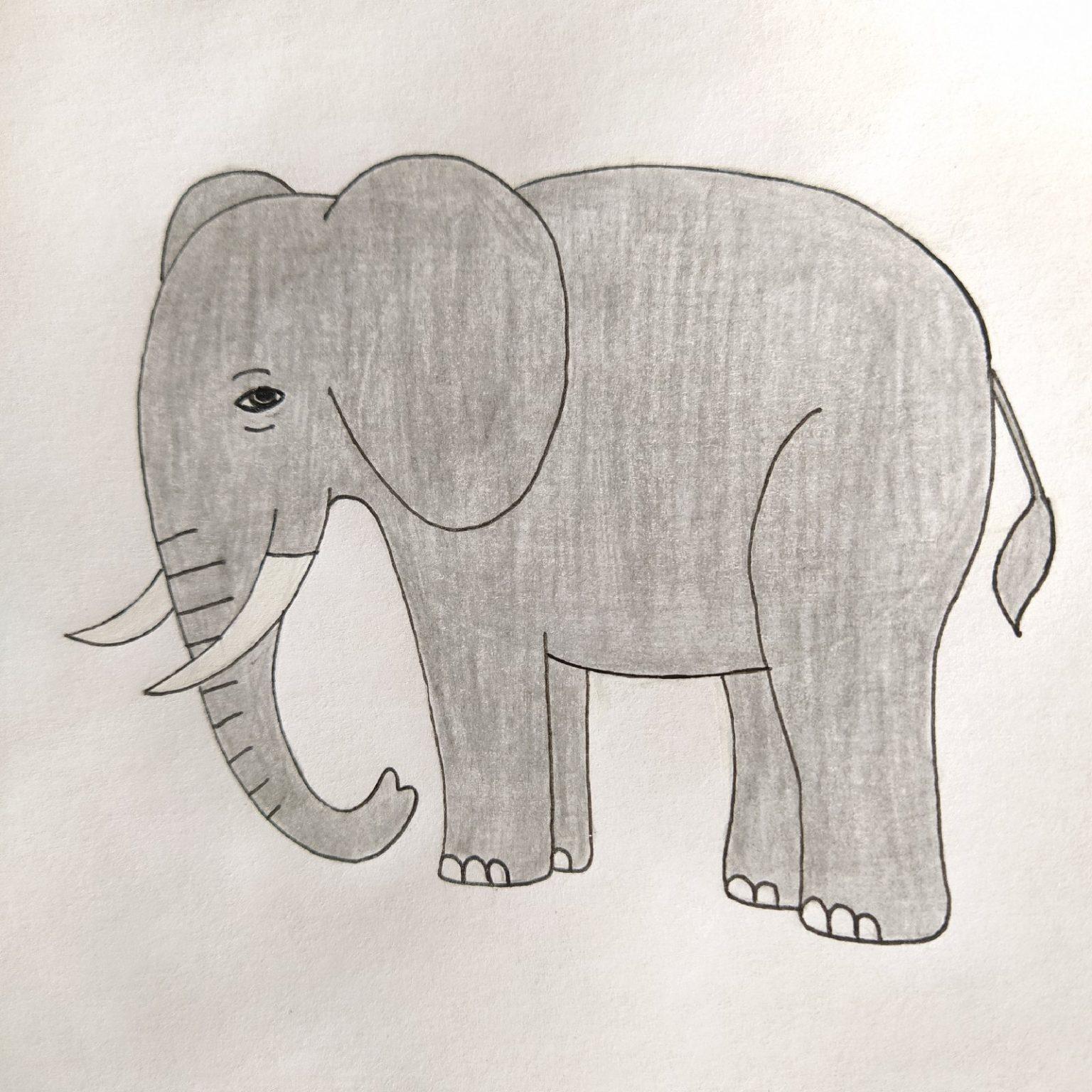слоники рисунок карандашом замужества