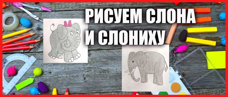 Как нарисовать слона поэтапно карандашом просто для детей