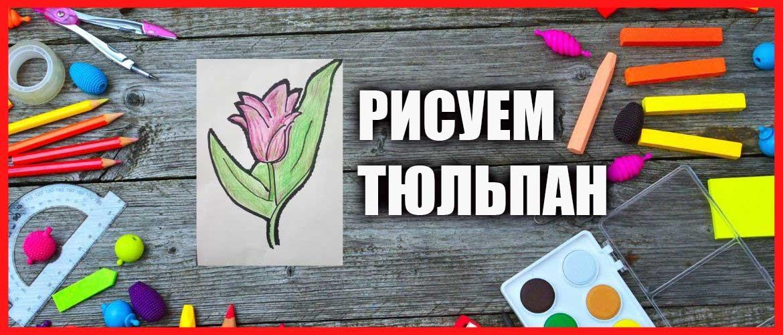 Рисуем тюльпан поэтапно маркером и карандашами