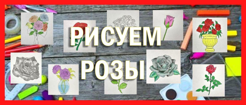 Как нарисовать красивую розу поэтапно легко (20 способов)